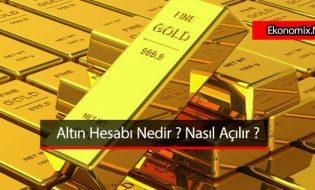 Altın Hesabı Nedir ? Altın Hesabı Nasıl Açılır ?