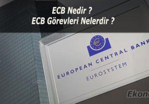 ECB Nedir ? AMB'nin Görevleri Nelerdir ?
